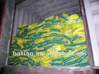 NPK Compound Fertilizer: 26-5-5