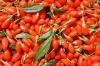 huici goji berry extract / dried goji berry extract