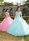 Unique Style Tulle Strapless Ball Gown Customize Your Own Quinceanera Dress QV-089