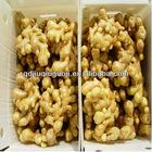 2012 new crop ginger