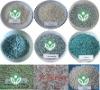 Compound NPK fertilizer