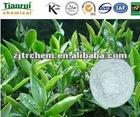 L-Theanine 3081-61-6