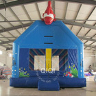 lovely inflatable bouncer for kids
