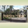decorative ornamental iron driveway gate FSM-062