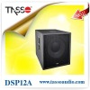 DSP12A Chinese pa speaker