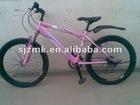 2012 MK-2021 bike bicycle beach cruisers