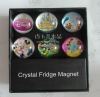 Exqusite Crystal Magnet
