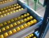 pallet rack/flow rack