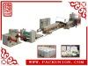 DY-1040 Styrofoam Production Line (TYPSP-90/120)(CE APPROVED)