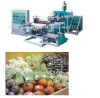 Automatic Winder Plastic Fresh Keeping Cling Film Extrusion Machine Line