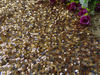 Manufacturer direct sales golden sequin fabric