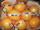 Fresh Shaddock Pomelo Fruit Products