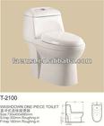 Economy washdown one piece of toilet