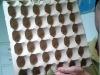 self-designed egg salver mould(30inside)