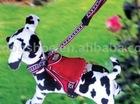 pet leash/harness