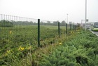 Factory welded wire fence panel (Since 1989 )