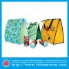nonwoven insulated bag,promotional Cooler bag,thermal bag