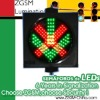 300mm Red Green LED Driveway traffic signal