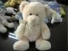 Shima teddy bear