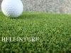 Beautiful Bi-color Golf putting Green BE1634050-3