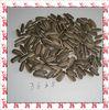 best black sunflower seeds