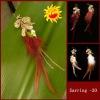 earring,fashion earring,alloy earring,silver earring,crystal earring ,stainless steel earring ,acrylic earring, glass earring,