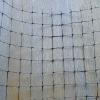 Plastic Anti-Bird mesh