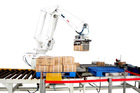 ABB Case Palletizing Robot