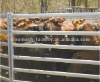 2012 new style cattle fence panel in artistic designs
