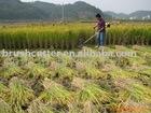 42.7cc rice harvester