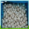 High Quality Frozen mushroom
