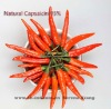 Natural Capsaicin 95%,used in health product, pharmaceuticals and cosmetics