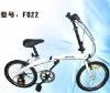 Flexpro Carbon Fiber Folding Bicycle(F022)