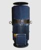 Vertical Hollow Shaft Motor (TEFC)