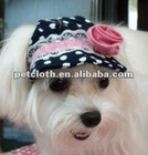 latest design pet hat for your special puppy