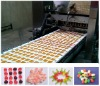 YX hard candy, lollipop candy, toffee candy depositing line of food processing machine