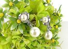 The bride's pearl earrings