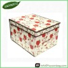 Fashion Lidded Storage Box