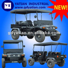2012 High Quality GMDM4 electric cart