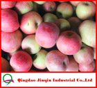 JQ Shandong Fresh Fruit Market Prices Red Fuji Apple 20KG/Carton