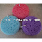 car wash sponge, car accessory