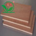 bintangor poplar plywood board