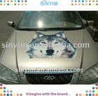 beautiful Car Decals