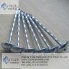 Twist Shank umbrella roofing naills
