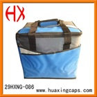 Hot Sell Cooler bag ( ice bag )