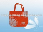 environmental shopping bag