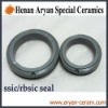 High Precise Sintered Silicon Carbide Oil Seal O-Ring