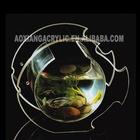 2012 Stylish new transparent acrylic fish tank