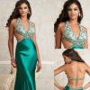 em195----2010 new coming sexy prom dress