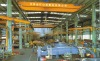 LH model overhead crane with electric hoist